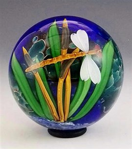 Tropic Dragonfly Paperweight