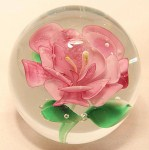 Floral Paperweight Camelia