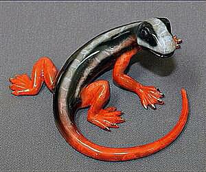 Round Lizard Multi Color Black