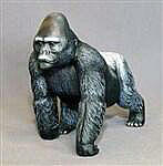 Gorilla Silverback Male Black