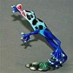 Gotcha! Bronze Frog Blue