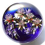 Clematis Bouquet on Cobalt