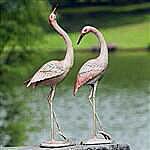 Flamboyant Crane Garden