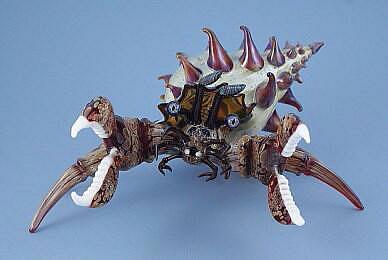 Large Hermit Crab Alternate View